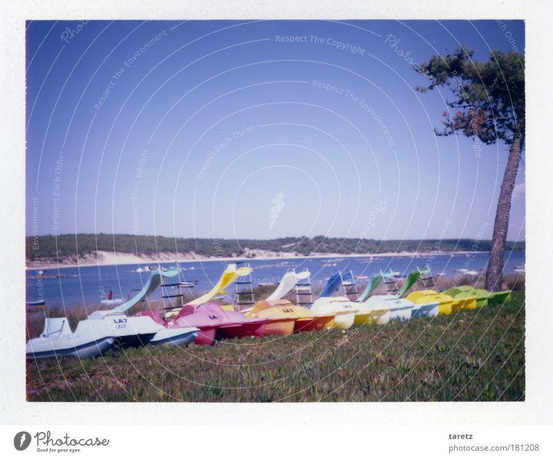 Der Sommer ist bunt! Farbfoto Außenaufnahme Polaroid Menschenleer Textfreiraum oben Tag Zentralperspektive Freizeit & Hobby Spielen Ferien & Urlaub & Reisen