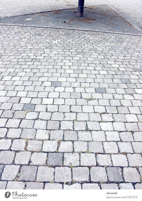 Natur pur... Baum Pflanze grau Stein Wege & Pfade Park Beton trist Baumstamm Pflastersteine Bochum Enttäuschung abstrakt Westpark