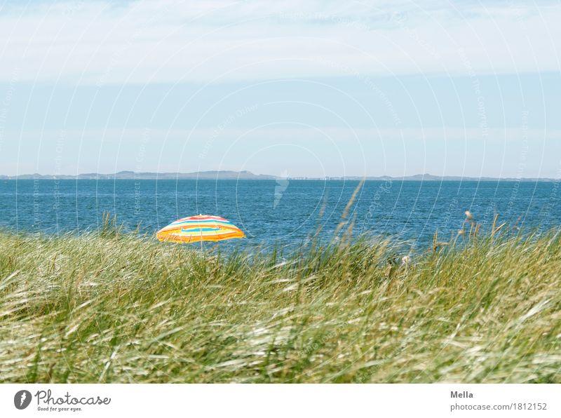 Sommer, Sonne, Meer und ... Strand? Natur Ferien & Urlaub & Reisen Landschaft Erholung Wärme Umwelt Küste Gras Tourismus Stimmung Horizont Freizeit & Hobby