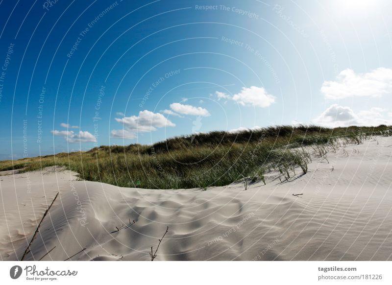 WEISSE DÜNE, NORDERNEY Himmel weiß Sonne blau Sommer Ferien & Urlaub & Reisen Wolken Meer Erholung Gras Wärme Sand Wind Insel Idylle Stranddüne