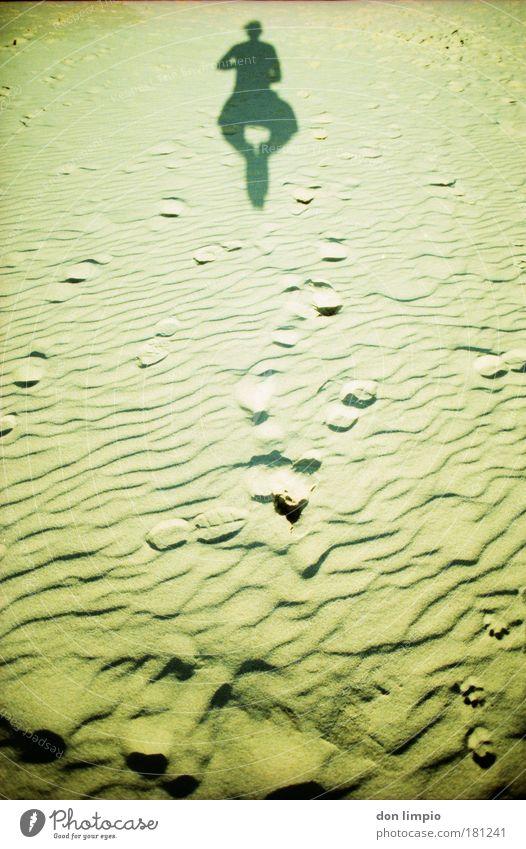 das ist spitze Mensch Strand Freiheit Bewegung Sand Gesundheit Körper fliegen hoch frei einfach fallen Cross Processing
