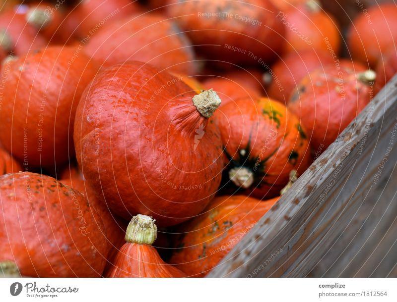 Kürbis Kürbis Kürbis Lebensmittel Gemüse Ernährung Bioprodukte Vegetarische Ernährung Fasten Freude Party Feste & Feiern Halloween kaufen orange viele