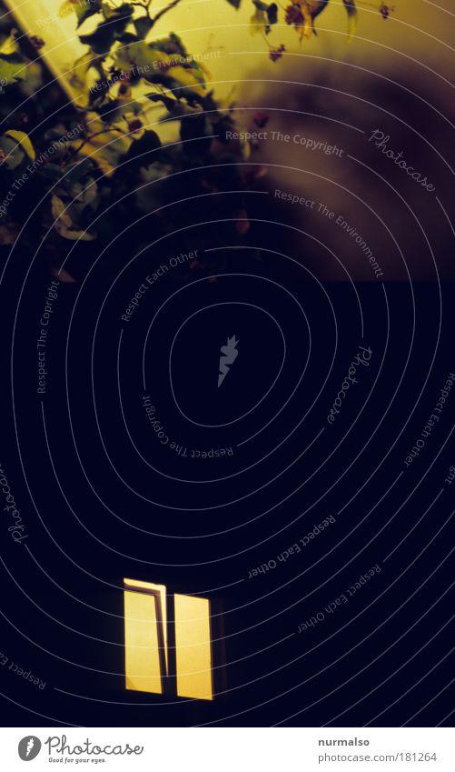 des Nachtens Farbfoto abstrakt Kunstlicht Lifestyle Freizeit & Hobby Häusliches Leben Traumhaus Beleuchtung Natur Baum Blatt Haus Fenster Blühend Denken
