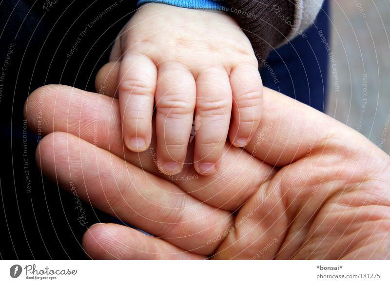 papa und ich Mensch Kind Mann Hand Erwachsene Liebe Wärme Gefühle Eltern Glück klein Familie & Verwandtschaft Baby Kindheit Haut groß