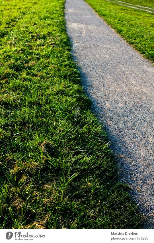 Weit weg Pflanze Einsamkeit Wiese Garten Wege & Pfade Park Feld gehen Dorf nachdenklich Stadtrand