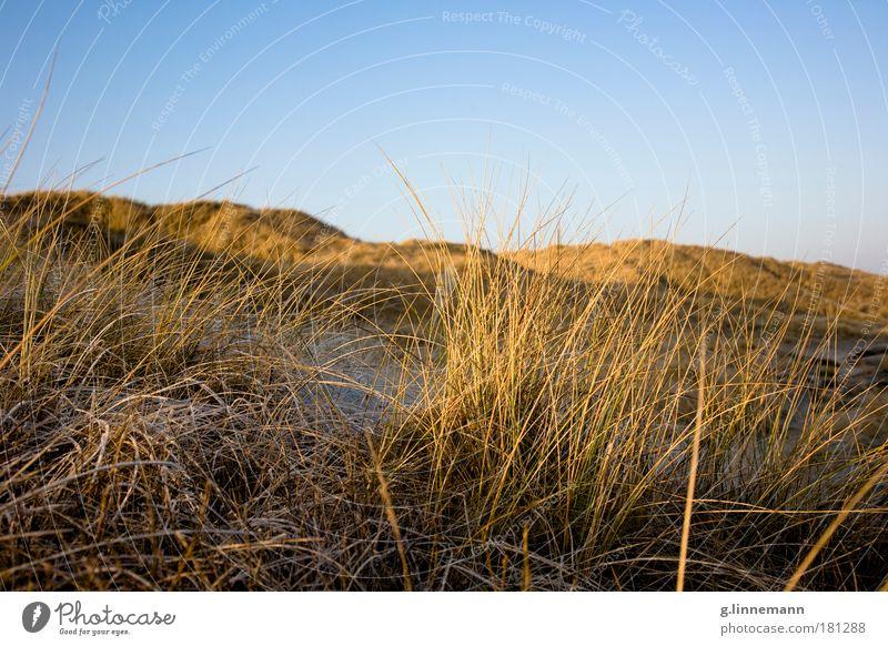 als sie mich... Küste. Farbfoto Gedeckte Farben Außenaufnahme Menschenleer Textfreiraum oben Morgen Dämmerung Sonnenlicht Sonnenaufgang Sonnenuntergang