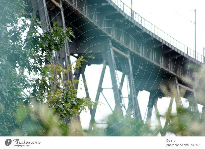 Romantischer Schlafplatz... Natur ruhig Zufriedenheit hoch Eisenbahn Kraft Brücke trist Güterverkehr & Logistik Schutz Gleise Idylle stark Verbindung Verkehrswege Strommast