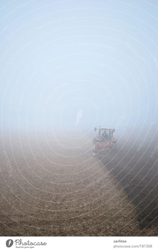 Heimische Scholle in Nebelsauce Einsamkeit kalt Arbeit & Erwerbstätigkeit Herbst Bewegung grau braun Feld Nebel Umwelt Erde Ordnung fahren Landwirt Ernte anstrengen