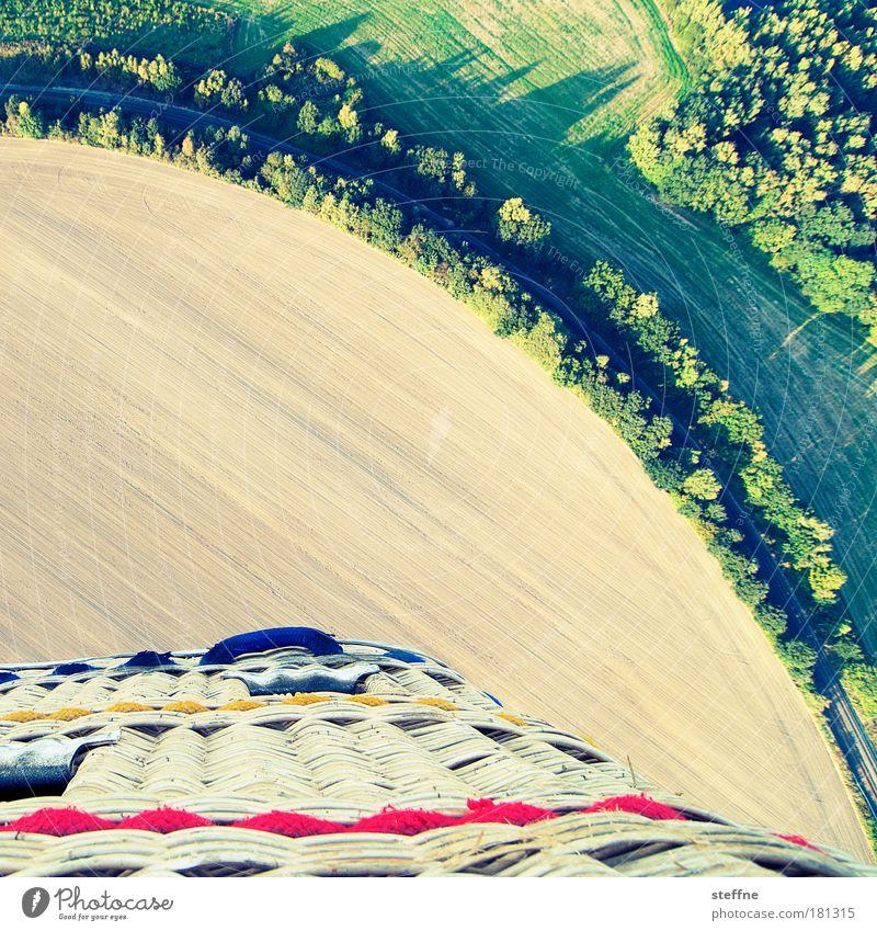 den Bogen raus haben Straße Wald Landschaft Feld fliegen Ballone Allee