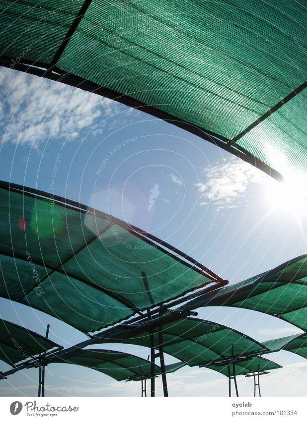 600 (verpasst) Himmel Ferien & Urlaub & Reisen grün Sommer Meer Strand Wolken Erholung Wärme oben Küste hell Wetter Wind Klima Freizeit & Hobby