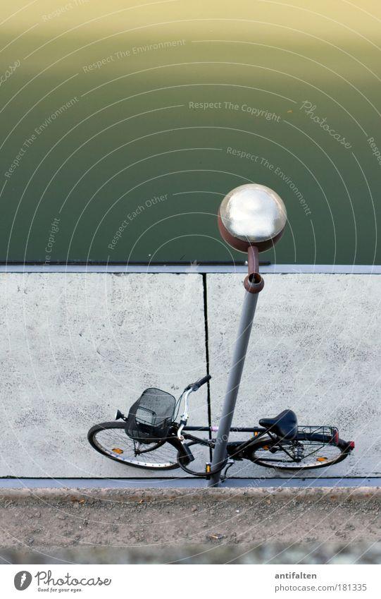 Draufsicht II Freizeit & Hobby Fahrrad Ausflug Sightseeing Städtereise Lampe Straßenbeleuchtung Energiewirtschaft Natur Flussufer Düsseldorf Deutschland Stadt