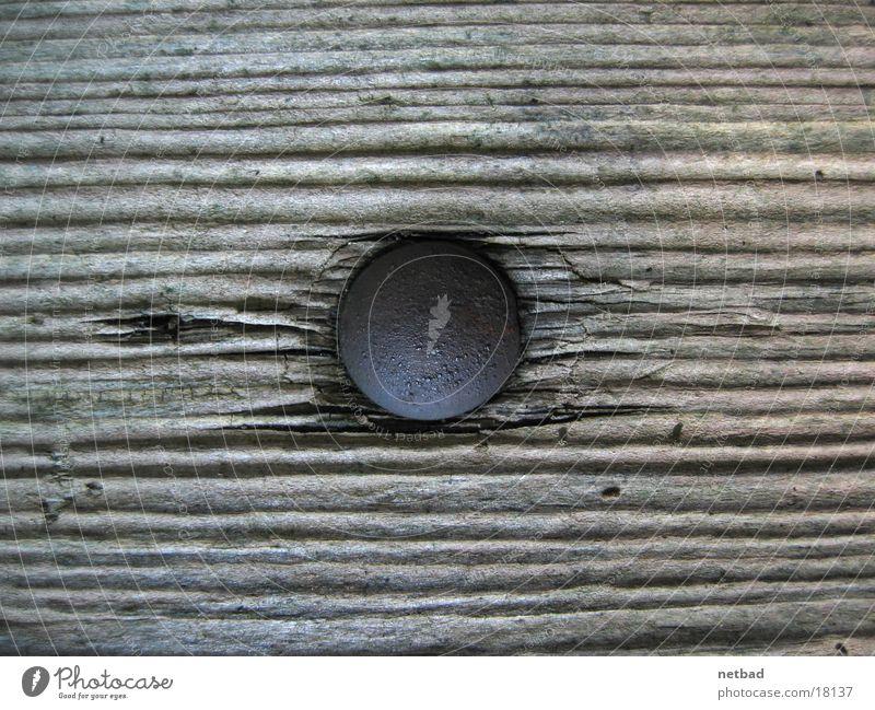 Nagel im Holz Dinge Feste & Feiern Rost