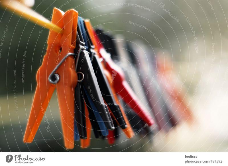 kollektives abhängen 02 Garten Arbeit & Erwerbstätigkeit Bekleidung Häusliches Leben einfach Beruf Leidenschaft Wäsche waschen kuschlig anstrengen Wäsche trocknen Seil Klammer aufhängen Wäscheleine