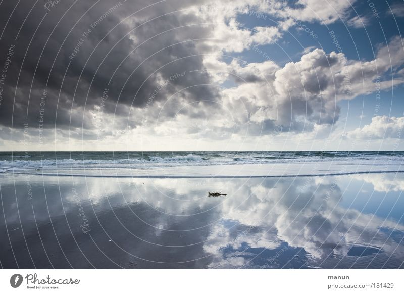 Vor dem Sturm I Natur Himmel Meer Sommer Strand Ferien & Urlaub & Reisen ruhig Wolken Ferne Leben Erholung Herbst Freiheit Landschaft Reflexion & Spiegelung