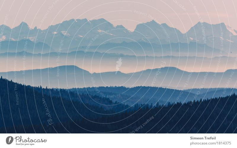 Schwarzwald und Alpen Freizeit & Hobby wandern Bergsteigen Tourismus Ausflug Abenteuer Ferne Freiheit Berge u. Gebirge Klettern Landschaft Sommer Herbst