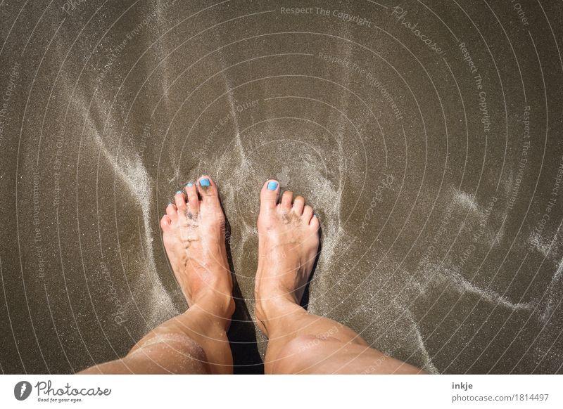 50cm vorm Atlantik Lifestyle Stil schön Pediküre Nagellack Freizeit & Hobby Ferien & Urlaub & Reisen Sommer Sommerurlaub Strand Meer Sandstrand Frau Erwachsene
