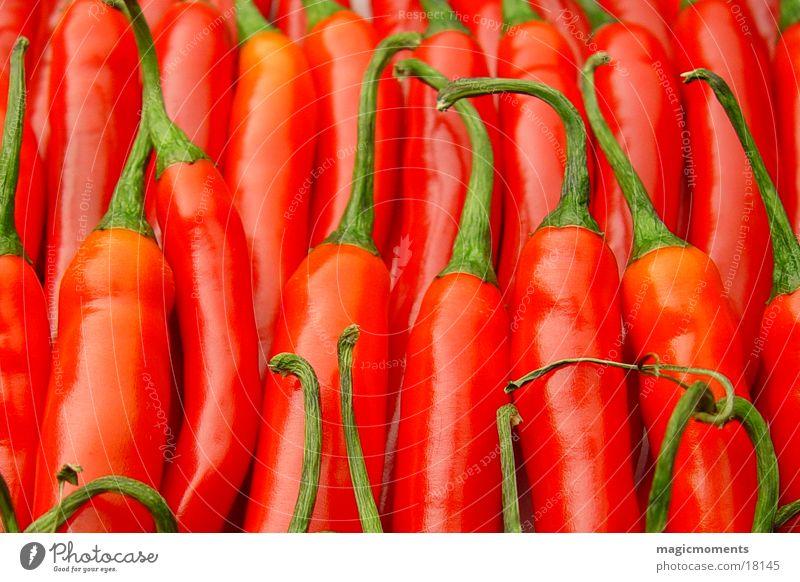 Peperonies rot Scharfer Geschmack Dinge