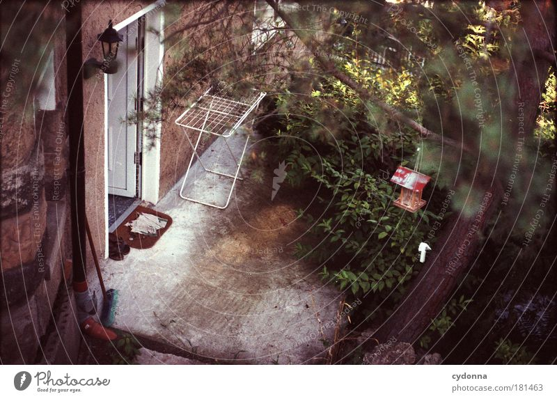 Hintertürchen Farbfoto Außenaufnahme Menschenleer Textfreiraum unten Tag Licht Schatten Kontrast Schwache Tiefenschärfe Vogelperspektive Häusliches Leben Baum