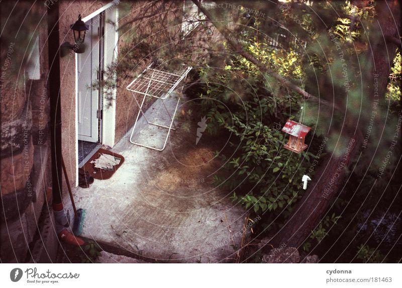 Hintertürchen Natur schön Baum ruhig Haus Einsamkeit Leben Garten träumen Traurigkeit Wege & Pfade Tür Zeit Perspektive Sträucher Bildung