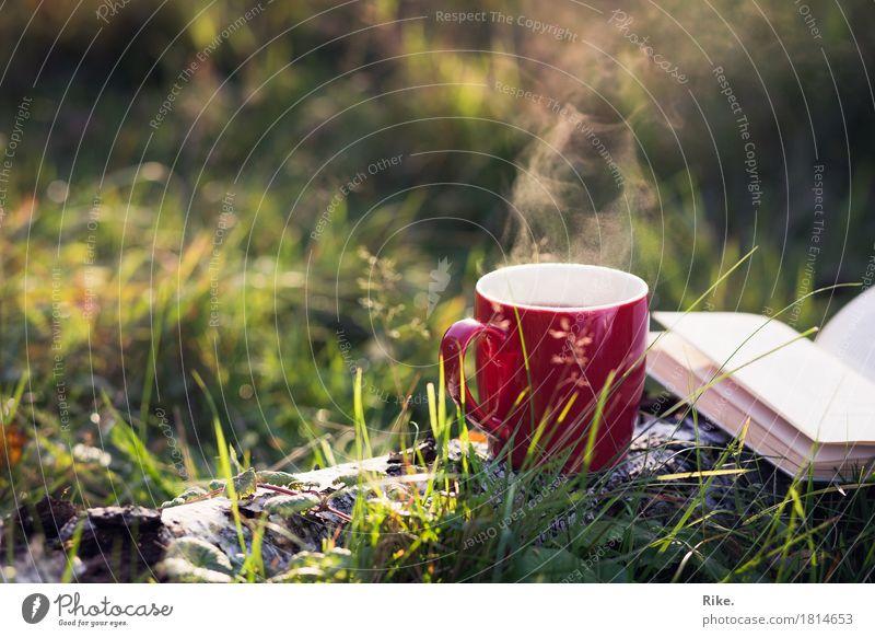 Herbstliebe. Freizeit & Hobby Ferien & Urlaub & Reisen Ausflug Abenteuer Sommer genießen träumen Zufriedenheit Warmherzigkeit ruhig Tasse trinken lesen Buch