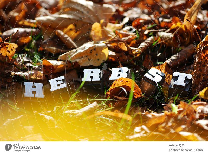 Rauschen. Natur Blatt Herbst Kunst braun Zufriedenheit Kindheit außergewöhnlich Schriftzeichen ästhetisch Boden Schönes Wetter Jahreszeiten Herbstlaub Heimat herbstlich
