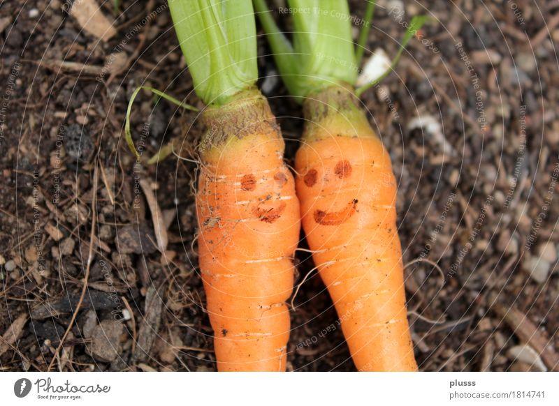 Zweikarottigkeit Lebensmittel Frucht Vegetarische Ernährung Liebe leuchten Glück Fröhlichkeit Zufriedenheit Lebensfreude Schutz Geborgenheit Einigkeit Sympathie