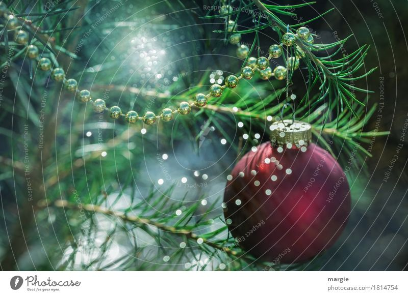 Weihnachtsbaum mit einer roten Kugel, vielen Lichtern und Ketten Feste & Feiern Weihnachten & Advent grün Weihnachtsdekoration Weihnachtsmarkt Beleuchtung