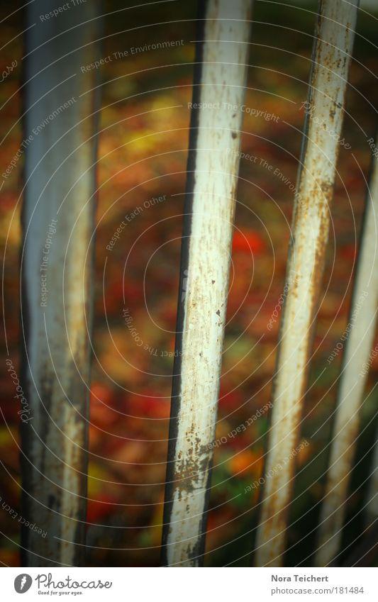 Nicht für immer ... Farbfoto mehrfarbig Außenaufnahme Nahaufnahme Detailaufnahme Experiment abstrakt Strukturen & Formen Menschenleer Abend Schatten Kontrast