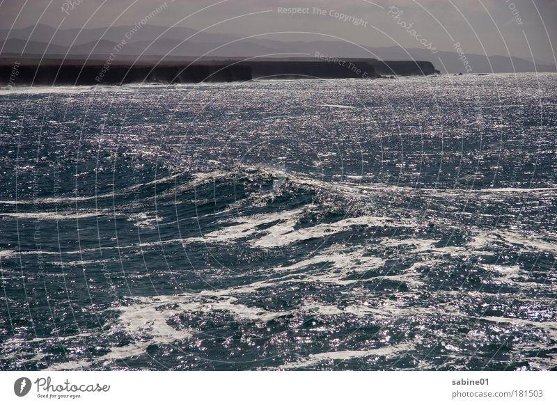 Küste Farbfoto Außenaufnahme Menschenleer Tag Schatten Kontrast Silhouette Reflexion & Spiegelung Lichterscheinung Totale Segeln Natur Luft Wasser Himmel Wolken