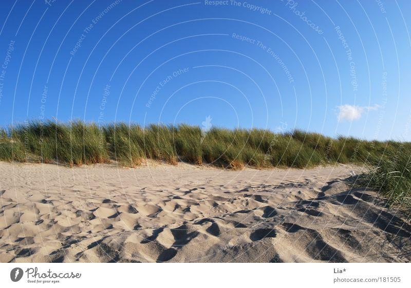 dünen idylle Himmel Ferien & Urlaub & Reisen Strand Erholung Landschaft Wege & Pfade Sand Wetter Nordsee Stranddüne Schönes Wetter Dünengras