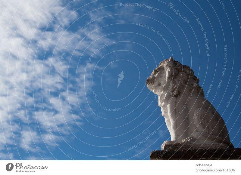 Lion King Farbfoto Außenaufnahme Textfreiraum links Tag Sonnenstrahlen Zentralperspektive Ganzkörperaufnahme Profil Blick nach vorn Skulptur Löwe 1 Tier Stein