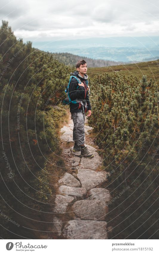 Junge, der unter den Zwergkiefern auf Gebirgspfad steht Lifestyle Freizeit & Hobby Ferien & Urlaub & Reisen Abenteuer Freiheit Sommer Berge u. Gebirge wandern 1