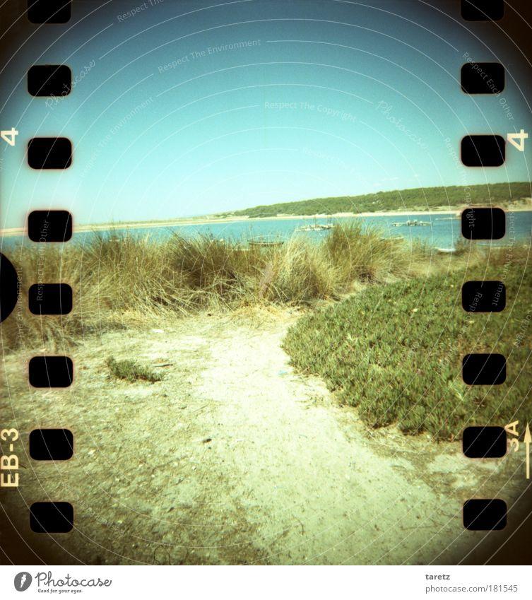 Zur Erholung gradeaus Himmel Natur Wasser grün blau Sommer Strand Meer Ferne Erholung Freiheit Gefühle Landschaft Gras Sand Wege & Pfade