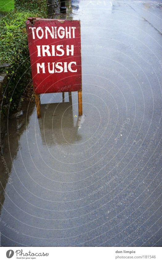 i think i spider rot Freude Wand Mauer grau Feste & Feiern Musik Schilder & Markierungen Schriftzeichen Veranstaltung Werbung analog Nachtleben Entertainment