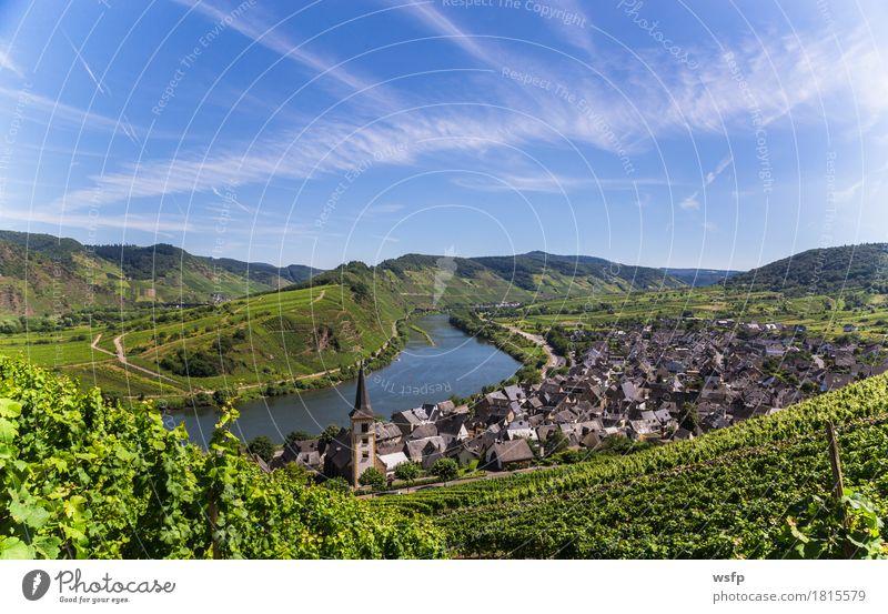 Blick auf Bremm an der Mosel mit Moselschleife Sommer Fluss Idylle Moseltal bremm calmont mosel moselschleife Weintrauben Eifel Rheinland-Pfalz Weinbau Weinberg