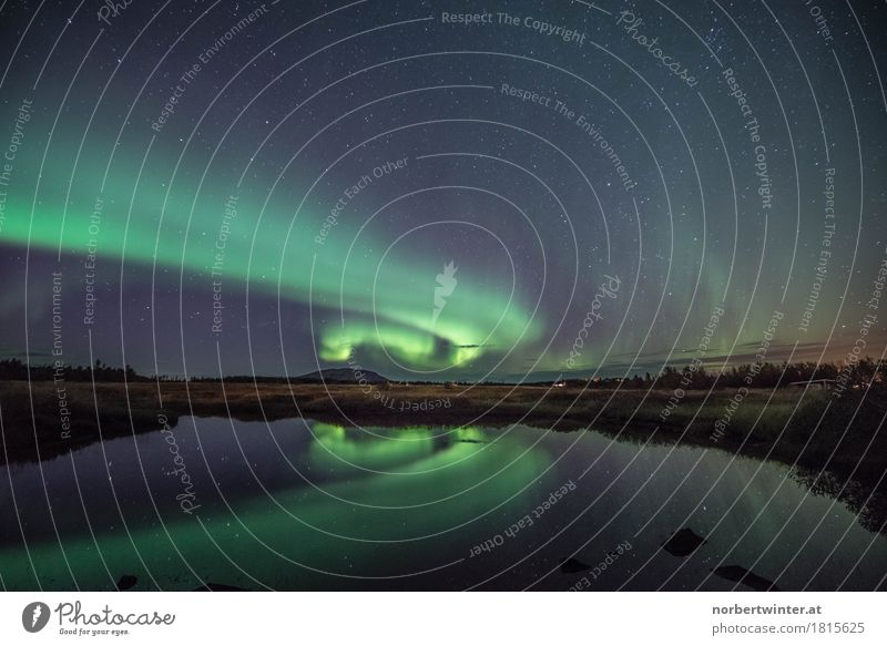 Nordlicht Natur blau grün Wasser Landschaft frisch Island