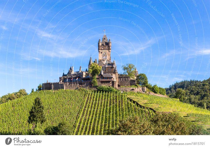 Reichsburg in Cochem an der Mosel Sommer Fluss Stadt Burg oder Schloss Idylle panorama reichsburg Moseltal mosel Weintrauben Eifel Rheinland-Pfalz Weinbau
