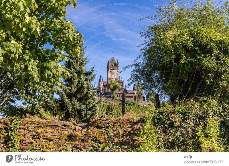 Reichsburg in Cochem an der Mosel Stadt Sommer Idylle Fluss Wein Burg oder Schloss Weinberg Weinbau Weintrauben Eifel Rheinland-Pfalz