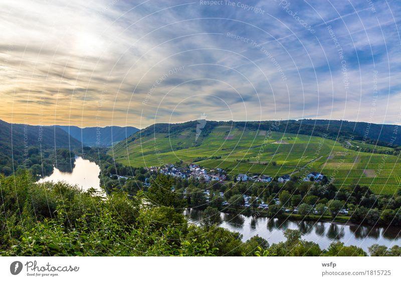 Aussicht auf das Moseltal bei Sonnenuntergang Panorama Sommer Fluss Idylle mosel Weintrauben Tal malerisch Eifel Rheinland-Pfalz Weinbau Weinberg schifffahrt