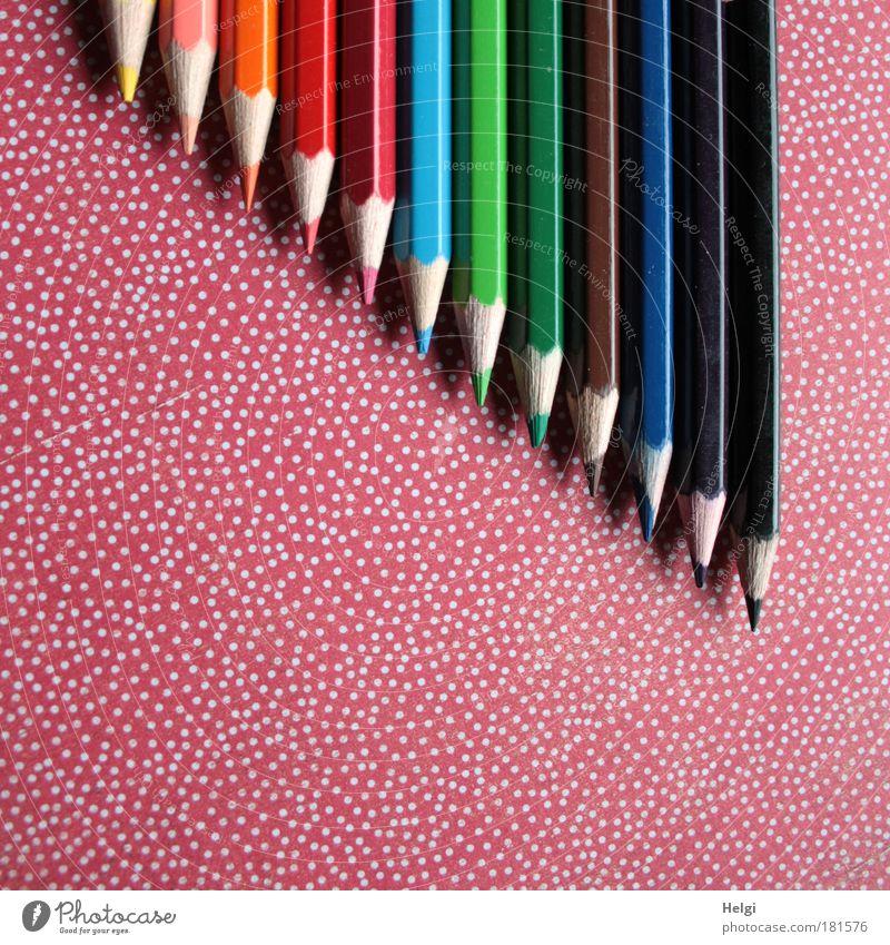 bunt... Ordnung blau grün weiß rot Freude schwarz gelb Farbe Kunst braun Schreibwaren Kindheit rosa Design ästhetisch