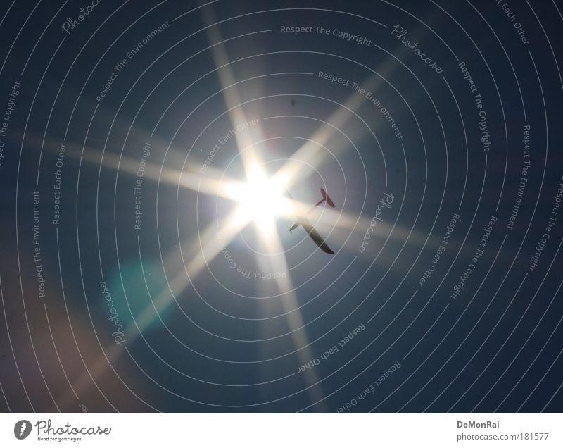 mythologisch Freizeit & Hobby Modellbau Luftverkehr Himmel Wolkenloser Himmel Sonne Schönes Wetter Flugzeug Propellerflugzeug Segelflugzeug fliegen hell