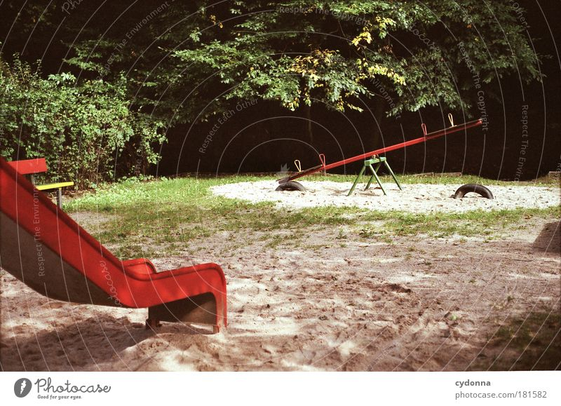 Kindheitserinnerung Natur Baum ruhig Umwelt Leben Spielen Bewegung Traurigkeit träumen Park ästhetisch Vergänglichkeit Bildung Kreativität Vergangenheit
