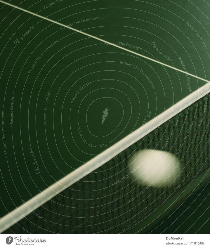 Pong? Ball Sportveranstaltung Linie Streifen Netz fliegen ästhetisch eckig elegant Sauberkeit Geschwindigkeit grün weiß Ausdauer Erfolg Konkurrenz Misserfolg