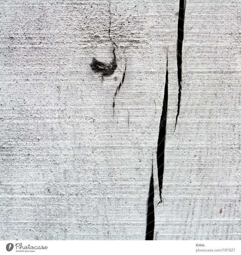 Der weiße Elefant ist traurig, sagt Lukas Holz alt authentisch fest natürlich Maserung Material getüncht Astloch gerissen Außenaufnahme Spalte Riss Farbstoff
