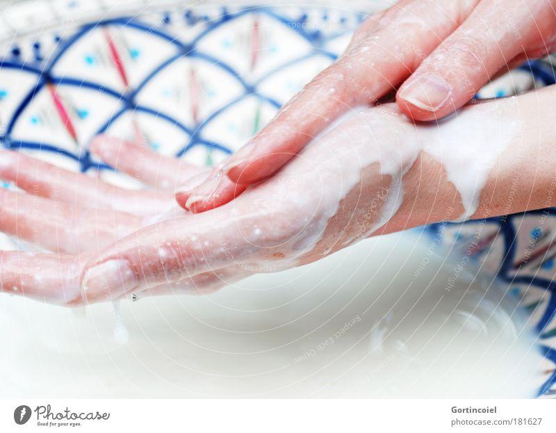 Milch und Honig Mensch Jugendliche schön Junge Frau weiß Hand feminin Schwimmen & Baden Haut Finger Wellness Körperpflege harmonisch Kosmetik Schalen & Schüsseln Waschen