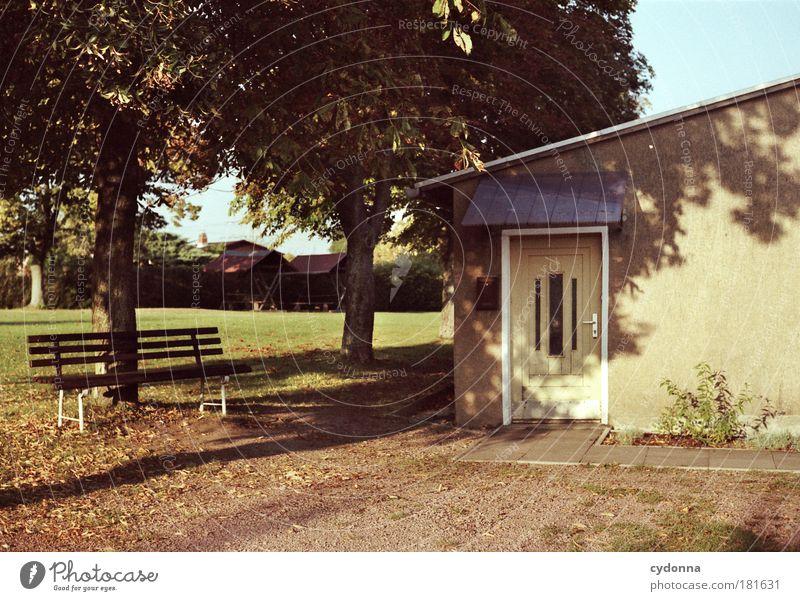 Herbstsonne Natur schön Baum ruhig Haus Einsamkeit Leben Erholung Wiese Garten träumen Traurigkeit Wege & Pfade Park Tür