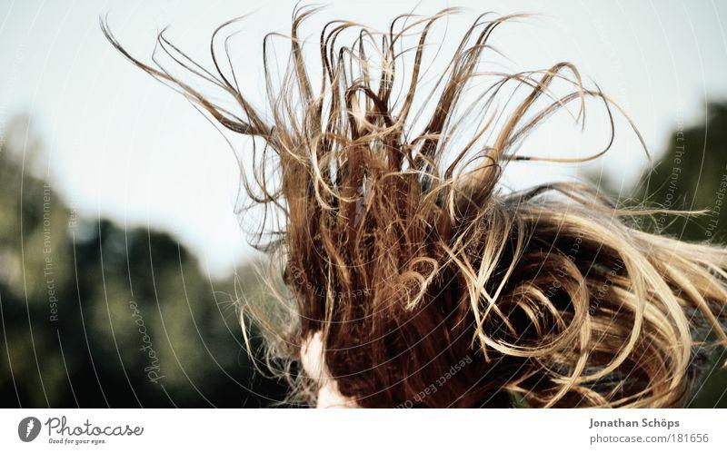 hüpfendes Haarwirrwarr Mensch Jugendliche Freude feminin springen Haare & Frisuren Kopf Erwachsene Zufriedenheit glänzend fliegen verrückt Lifestyle Fröhlichkeit Kreis einzigartig