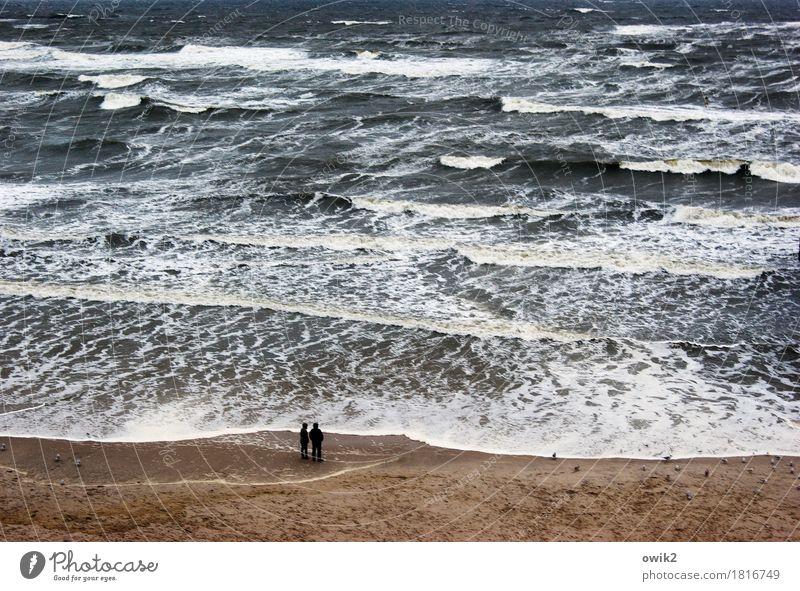 Planschbecken Mensch Frau Natur Mann Wasser Ferne Strand Erwachsene Umwelt Küste wild Wellen Idylle Wind Klima Ostsee