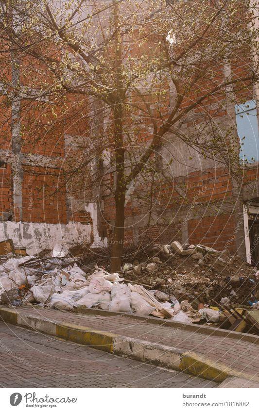 Quarter Stadt Baum Haus Straße Wand Mauer Stein Stadtleben dreckig Europa Asien Hauptstadt Müll Backstein Stadtrand Türkei