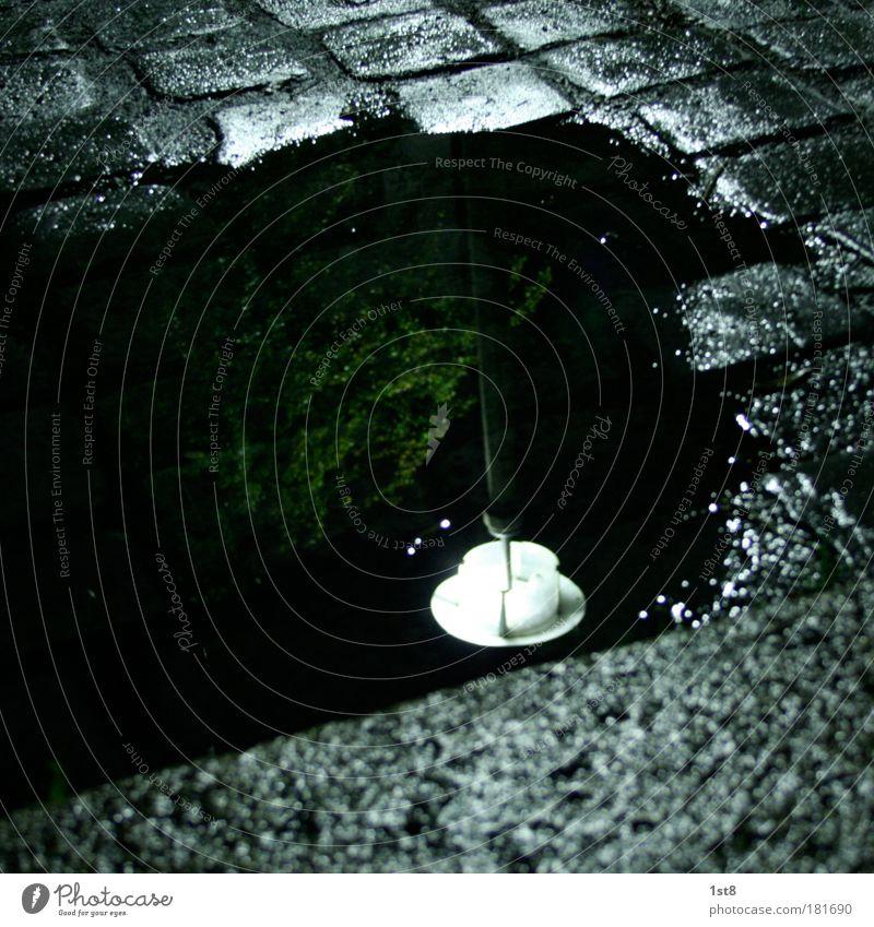 verirrte Tasse weiß grün ruhig schwarz Straße nass Pause Verkehrswege Kopfsteinpflaster Straßenverkehr stagnierend Altstadt Kleinstadt Detailaufnahme